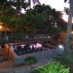 Pool,  night light