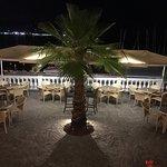 Golfo e Palme Foto