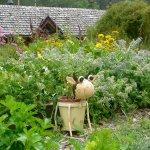 Des jardins bio, productifs et sympathiques