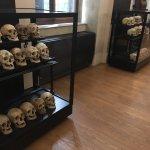 Photo of Museo di Antropologia Criminale Cesare Lombroso