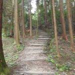 始めの方はこんな急な階段を上ります