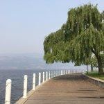 Waterfront Park Foto