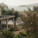 A misty morning view out over the garden to the sea.
