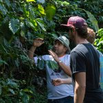 Photo of El Toledo Coffee Tour