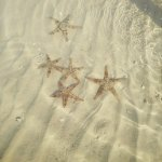 Photo of Porto Sokhna Beach Resort