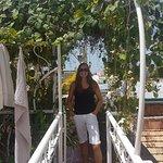 Roy's Terrace Inn Image