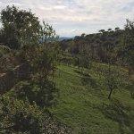 Photo de Agriturismo La Tinaia