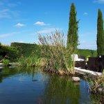 Le bassin et l'espace détente