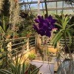Photo de Norfolk Botanical Garden