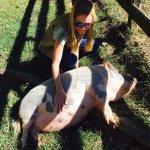 Sweet Piglet!!