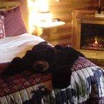 Cabin Creek Inn Foto