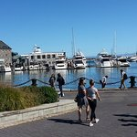 Strolling visitors on the marina