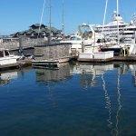 Boats alongside the marina