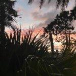Outside Sunset