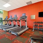 Fitness Center - Cardio and Free Weights