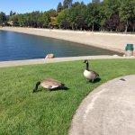 Photo de Coeur d'Alene City Park and Independence Point