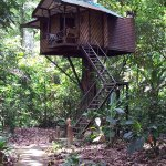 Photo de Tree Tops Jungle Safaris - Raft Houses