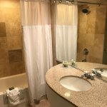 Very clean bathroom with terrific shower