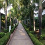 25,000 square meters of tropical gardens.