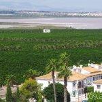 Foto de Hotel Dña Monse