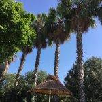 Photo de Alice Springs Hotel