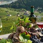Der bekannte Erholungsort Spitz liegt am linken Donauufer im Herzen der Wachau.