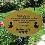 üzüm cafe & restaurant resmi