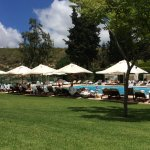 Photo of Carmel Forest Spa Resort by Isrotel Exclusive Collection