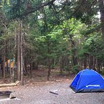 Foto de Blackwoods Campground