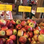Great smaller farm. Amazing, hard to find heirloom apples, baked goods, farm store, pick your ow