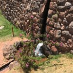 Tipon gardens