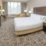 One King Guest Room