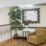 Photo of Sleep Inn & Suites Hotel Pearland - Houston South