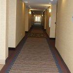 Foto de Holiday Inn Express Niles