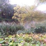 Photo of Old Botanical Gardens