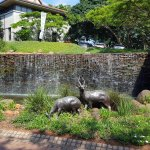 Photo de Fairmont Zimbali Lodge