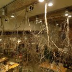 """Retail Therapy respite from the first floor """"Cafe 1881"""" at Snape Maltings"""