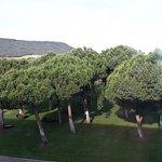 Foto de Hotel & Spa Arzuaga