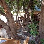 Rai Winery & Restaurant