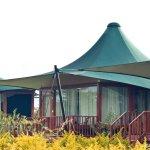 Photo de AA Lodge Masai Mara