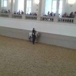 Photo of Spanish Riding School
