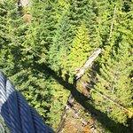 Vista desde a ponte suspensa