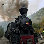 Photo of Vaser Valley Forestry Railway - Day Tours