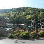 Фотография Tree Tops Resort