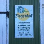 Ziegenhof Matzen