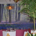 Monsun - Dining experience in a Rain forest -