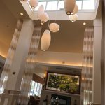 Hilton Garden Inn Foyer and Lobby plus Buffalo Chicken Salad and Baylor, Scott, and White Hospit