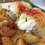 Maine Lobster Benedict was delicious