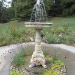 Morris Arboretum Foto