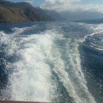 Foto de Positano Boats